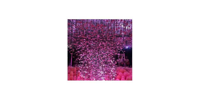 Mii de flori roz au decorat petrecerea grandioasa organizata de Khloe Kardashian