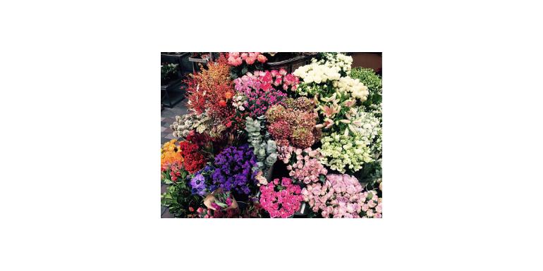 Cum ne îmbunătățesc florile starea de spirit